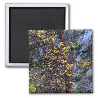 Golden Foliage Magnet