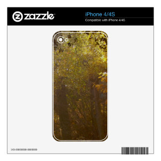 Golden Forest Skins For iPhone 4