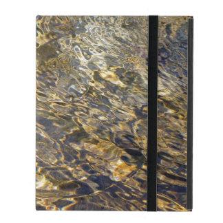 Golden Fountain Water 2 iPad Folio Cases