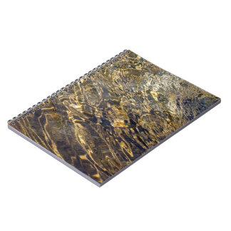 Golden Fountain Water 2 Spiral Notebook