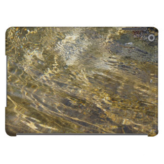 Golden Fountain Water iPad Air Cover