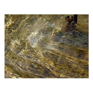 Golden Fountain Water Postcard