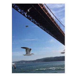 Golden Gate Bridge 3 Postcard