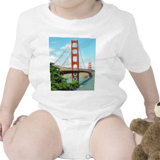 Golden Gate Bridge In San Francisco Creeper