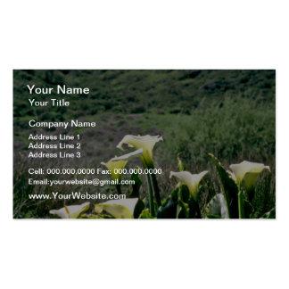 Golden Gate Nat'l Recreation Area - Calla Lilies P Business Card Template