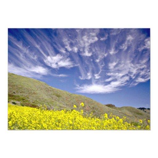 Golden Gate Nat'l Recreation Area - Marin Headland 5x7 Paper Invitation Card