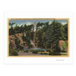 Golden Gate Park, Drake's Cross & Falls Postcards