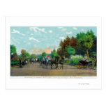 Golden Gate Park Driveway View Post Card