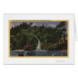 Golden Gate Park, Stow Lake, Huntington Falls Card