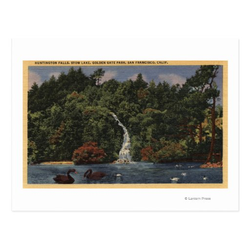 Golden Gate Park, Stow Lake, Huntington Falls Postcard