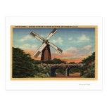 Golden Gate Park, the Dutch Windmill Post Card