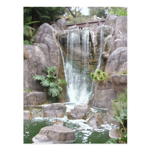Golden Gate Park Waterfall Postcards