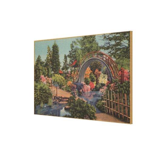 Golden Gate ParkTea Garden- San Francisco, CA Canvas Print