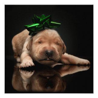 Golden Gift Square Christmas Card Invite