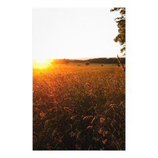 Golden Glow of Sunset Stationery