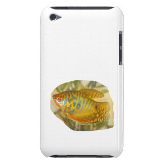 Golden Gourami Side View Saturated Aquarium Fish iPod Touch Case-Mate Case
