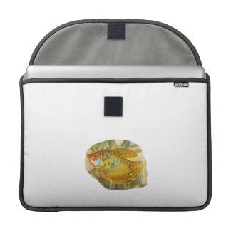 Golden Gourami Side View Saturated Aquarium Fish Sleeve For MacBook Pro