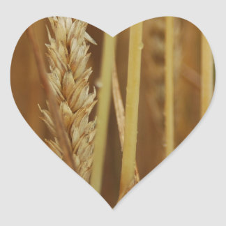 Golden Grain Heart Sticker
