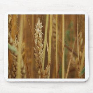 Golden Grain Mouse Pad