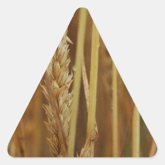Golden Grain Triangle Sticker