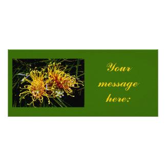 Golden Grevillea Rack Card