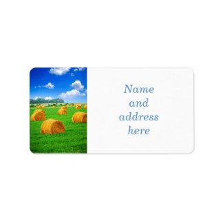 Golden hay bales in green field labels