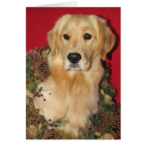 Golden Holiday Wishes Greeting Card