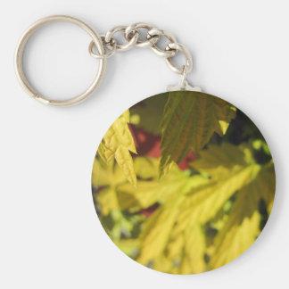 Golden Hops Basic Round Button Keychain