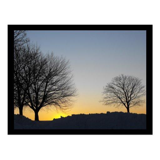 Golden Horizon Postcard