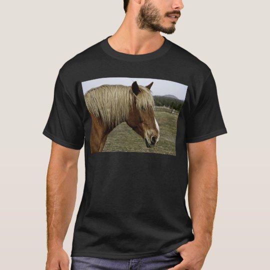 Golden horse T-Shirt
