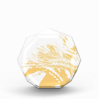 Golden hours acrylic award