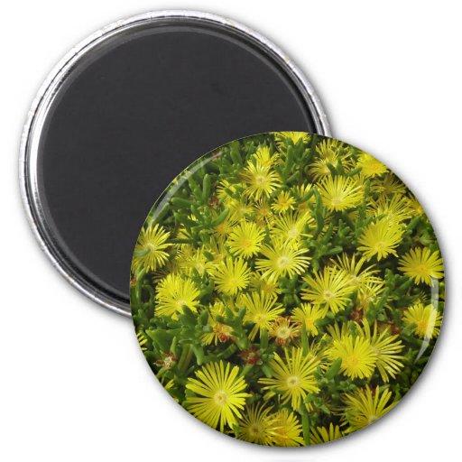 Golden Ice Flowers Magnet