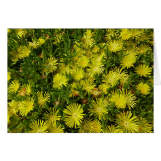 Golden Ice Plant Yellow Flowers Card