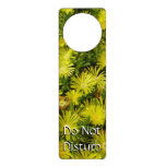 Golden Ice Plant Yellow Flowers Door Hanger