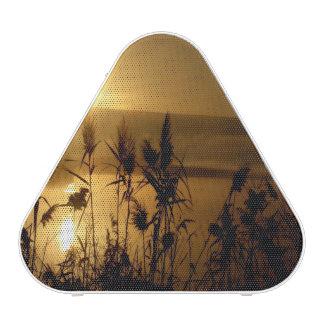 Golden Israel Sunrise Speaker