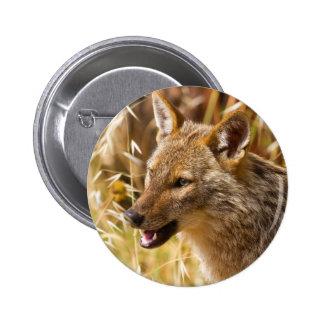 Golden Jackal Canis Aureus Buttons