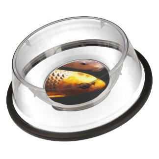 Luxurious pet bowls dog bowls cat bowls zazzle for Koi fish bowl