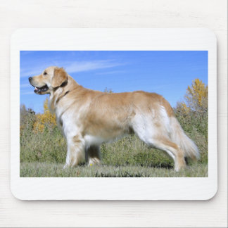 Golden Lab Mouse Pad
