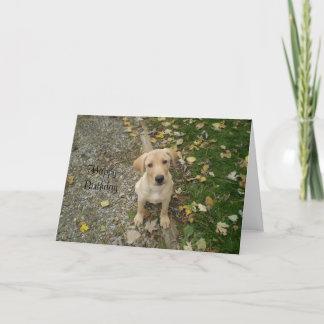 Golden Lab Puppy Card