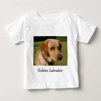 Golden Labrador Baby T-Shirt