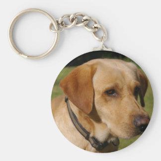 Golden Labrador Keychain