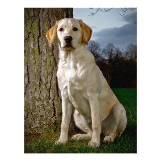 golden Labrador Letterhead