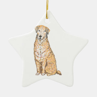 Golden Labrador Ornaments and products, customize