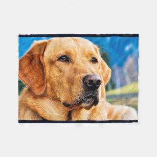 Golden Retriever Blankets Amp Throws Zazzle