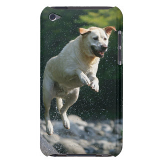 Golden Labrador Retriever jumping into river Barely There iPod Case