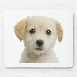 Golden Labrador Retriever Puppy Mouse Pad