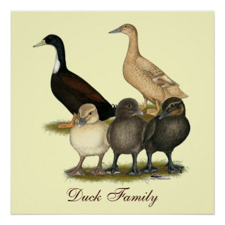 Golden Layer Duck Family Poster