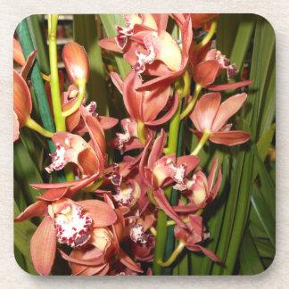 Golden Leaf - Edge Orchids Coaster