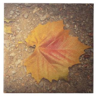 Golden leaf tile