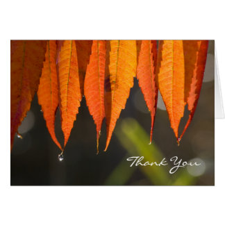 Golden Leaves Thank You Card